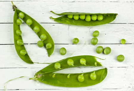 Green Peas for pea protein